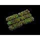 Jungle Bases, Bike 25x70 (4)