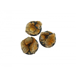 Shale Bases, 50mm Round (2)