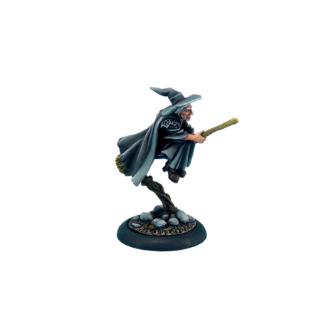 Discworld Esme on broom (1)