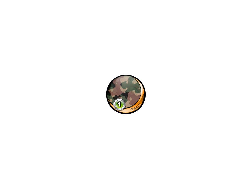 008 - Camo Paradiso 1