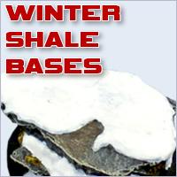 Winter Shale
